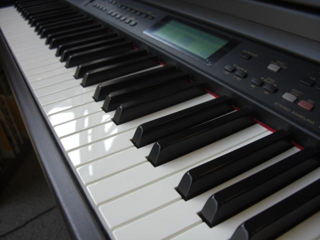 Cimg0604